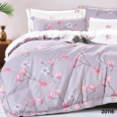 Комплект постельного белья ранфорс 20116
