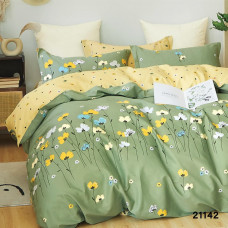 Комплект постельного белья Вилюта ранфорс 21142